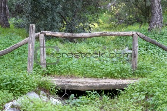 Small Wooden Bridge