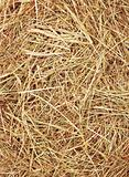 Straw texture