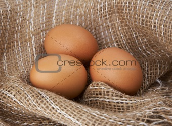 Three eggs in canvas