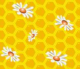 Seamless background with honeycombs