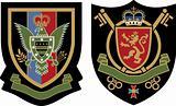 heraldic eagle symbol shield