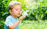 Boy With Dandelion