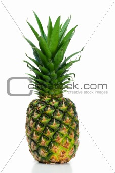 Angled pineapple upright