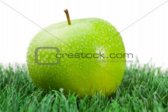 Green wet apple on grass
