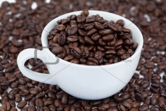 Small white cup of coffee beans