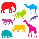 Set of African animals, isolated and grouped objects over white 