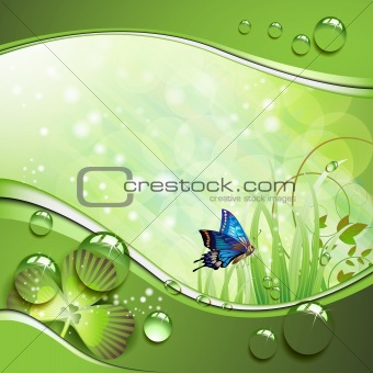Butterfly, clover and grass