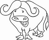 african buffalo for coloring book