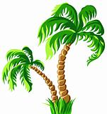 vector two palm trees isolated on a white background