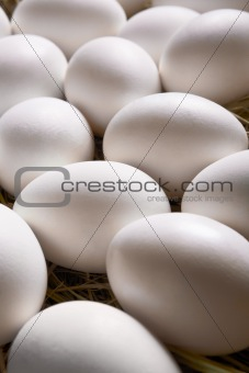 Egg background