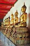 Golden sitting Buddha statues in Wat Pho