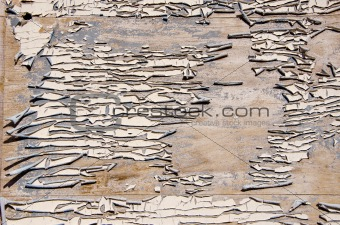 grunge and cracked painted door background