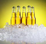 Five bottles of beer on a yellow background