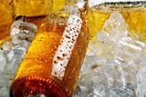 Bottles of cold beer lying in the ice.