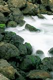 Rocky coastline, nature stock photography