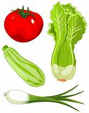 Set of vegetables5