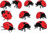 ladybird silhouette collection