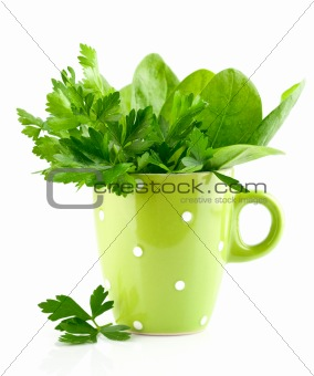 green parsley and spinach in cup