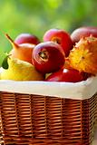 Basket of tropical fruits.