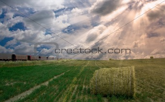 Train and field with hay