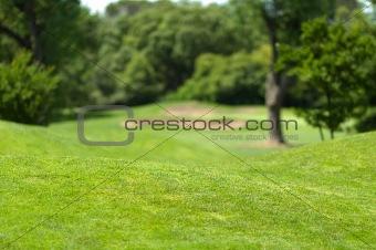 Beautiful Golf Park Landscape