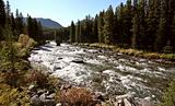 Maligne River in Jasper National Park
