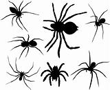 Spiders silhouettes
