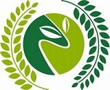 green laurel leafs logo