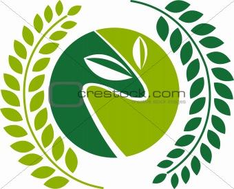 green laurel leafs logo