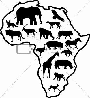 Africa animal