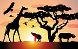 giraffe, rhinoceros and elephant in africa