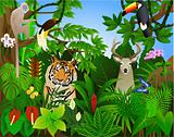 Animal in the tropical jungle