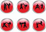 buttons with karate  collection