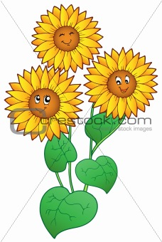 Three cute sunflowers