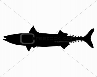 Atlantic Mackerel silhouette