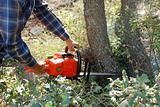 chainsaw in action