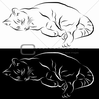 Sleeping Cat Line Drawing