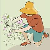 Man Pruning Flower Garden Line Drawing