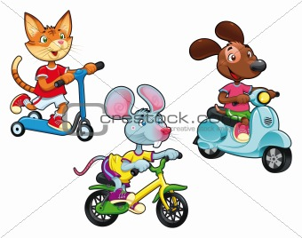 Animals on vehicles.