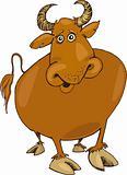 funny bull