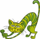 Green Cat