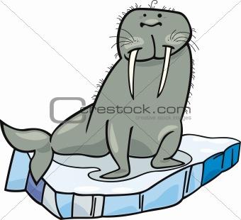 cartoon Walrus on floating ice