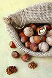 hazelnuts and walnuts in a linen bag