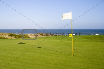 Green in a golf course