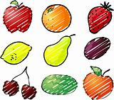 Fruit illustration