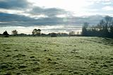 Frosty Paddock in Colour