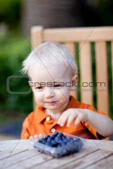 toddler eating berries