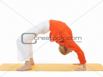 series or yoga photos. young woman in chakrasana pose