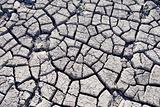 soil cracked