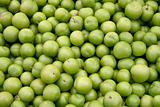 Fresh greengages